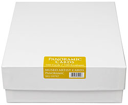 "9.125"" x 3.875"" Museo Artists Cards (Panoramic) 200gsm with matching Envelopes (100 cards & envelopes), double sided"